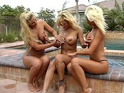 Krystal, Phoenix and Shyla playing with each other outdoor