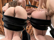 Sophie Dee and Dani Daniels getting pounded on the swing set